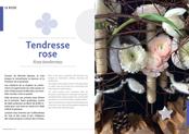 editionsnacre.com/images/nacre_58/nacre-58-chap-01-mini.jpg