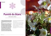 http://editionsnacre.com/images/nacre_58/nacre-58-chap-02-mini.jpg
