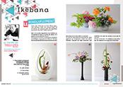 http://editionsnacre.com/images/nacre_59/nacre-59-chap-ikebana-mini.jpg