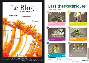 http://editionsnacre.com/images/nacre_62/nacre-62-chap-fiches-techniques-mini.jpgi.jpg