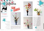 http://editionsnacre.com/images/nacre_65/nacre-65-ikebana-mini.jpg