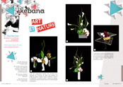 http://editionsnacre.com/images/nacre_66/nacre-66-ikebana-mini.jpg