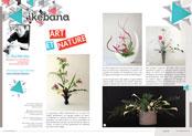 http://editionsnacre.com/images/nacre_67/nacre-67-ikebana-mini.jpg