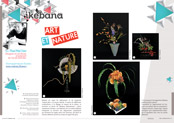 http://editionsnacre.com/images/nacre_69/nacre-69-ikebana-mini.jpg
